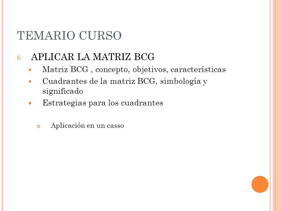 TEMARIO CURSO APLICAR LA MATRIZ BCG