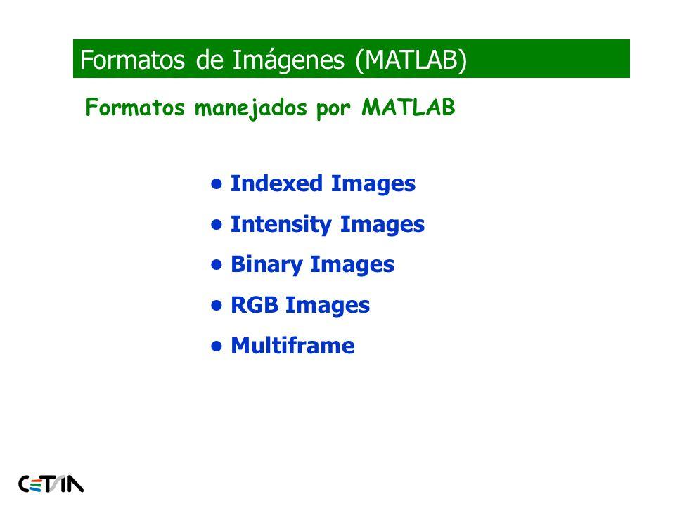 Formatos de Imágenes (MATLAB)
