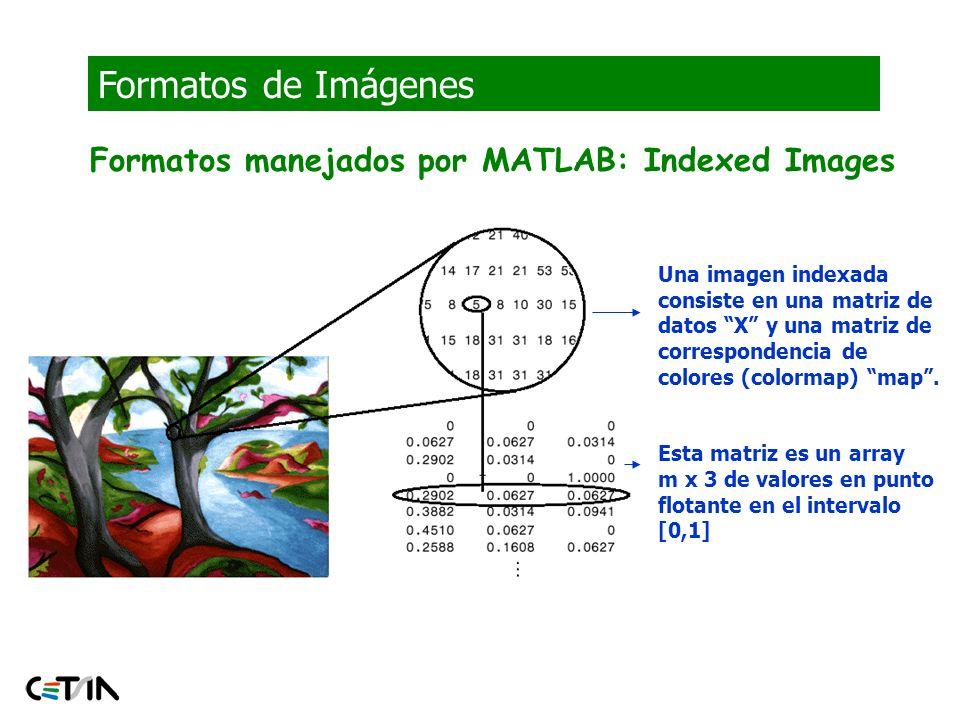 Formatos de Imágenes Formatos manejados por MATLAB: Indexed Images