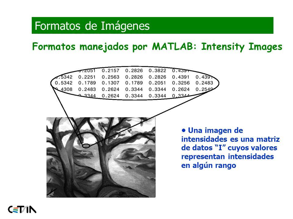 Formatos de Imágenes Formatos manejados por MATLAB: Intensity Images