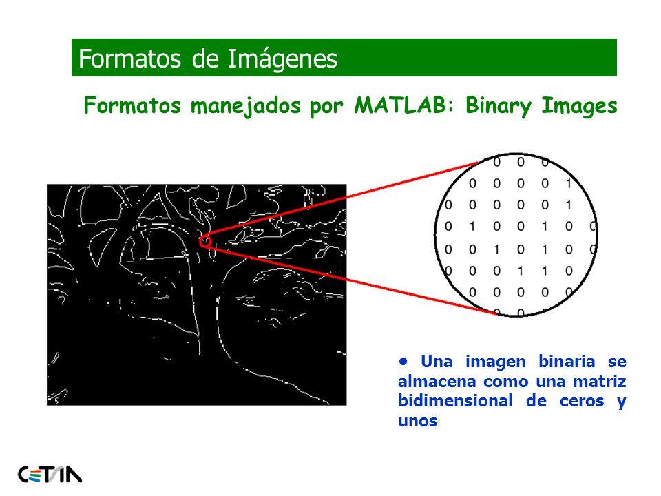 Formatos de Imágenes Formatos manejados por MATLAB: Binary Images