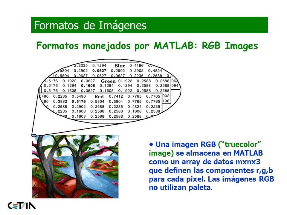Formatos de Imágenes Formatos manejados por MATLAB: RGB Images