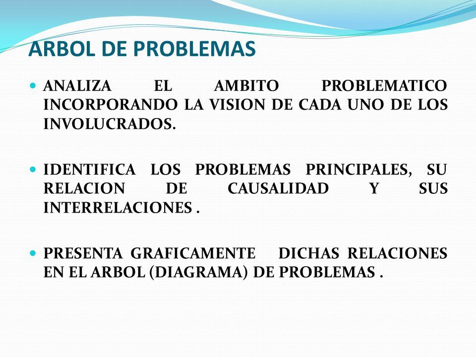 ARBOL DE PROBLEMAS ANALIZA EL AMBITO PROBLEMATICO INCORPORANDO LA VISION DE CADA UNO DE LOS INVOLUCRADOS.