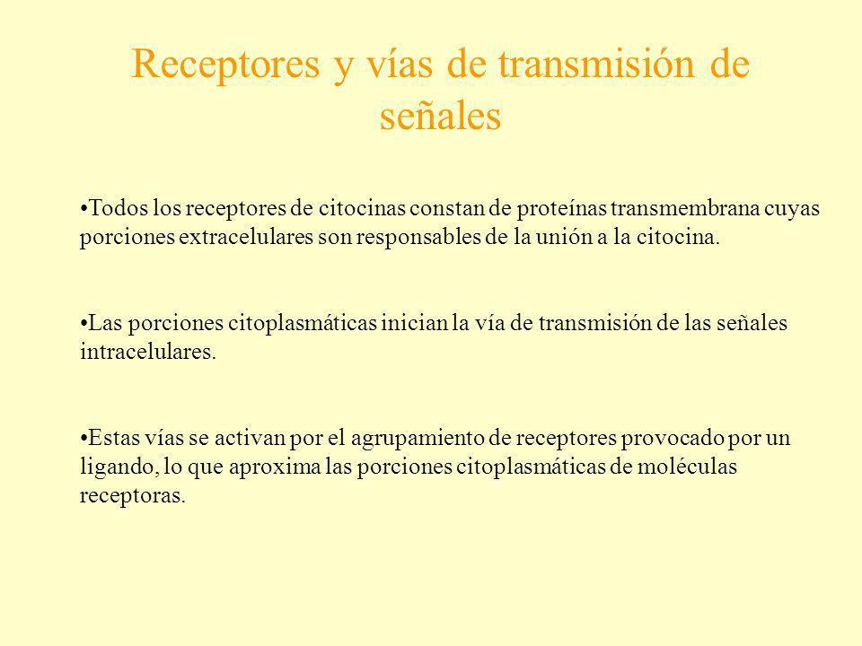 Receptores y vías de transmisión de señales