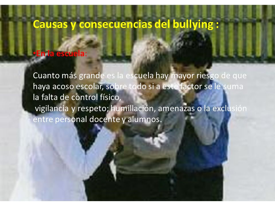 Causas y consecuencias del bullying :