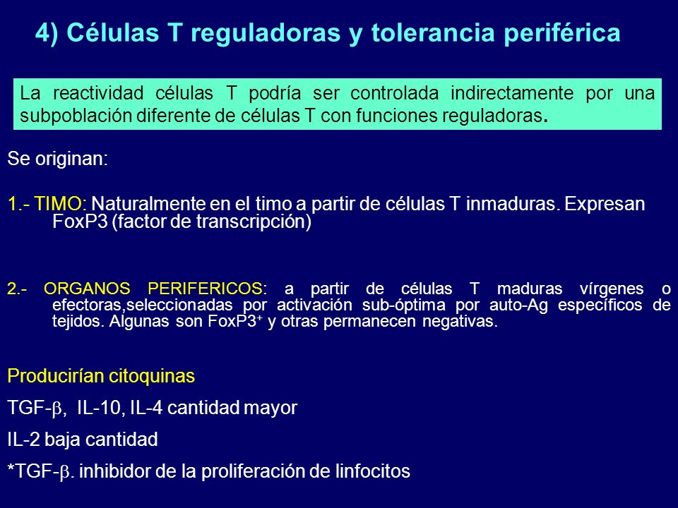 4) Células T reguladoras y tolerancia periférica