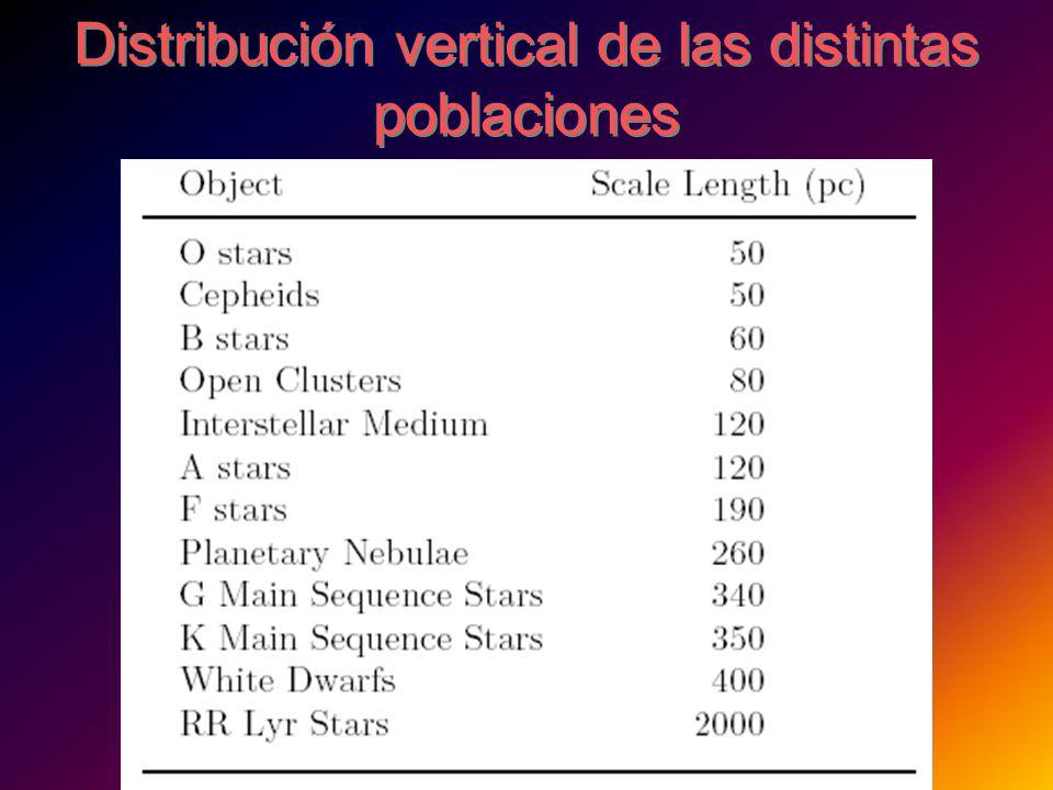 Distribución vertical de las distintas poblaciones
