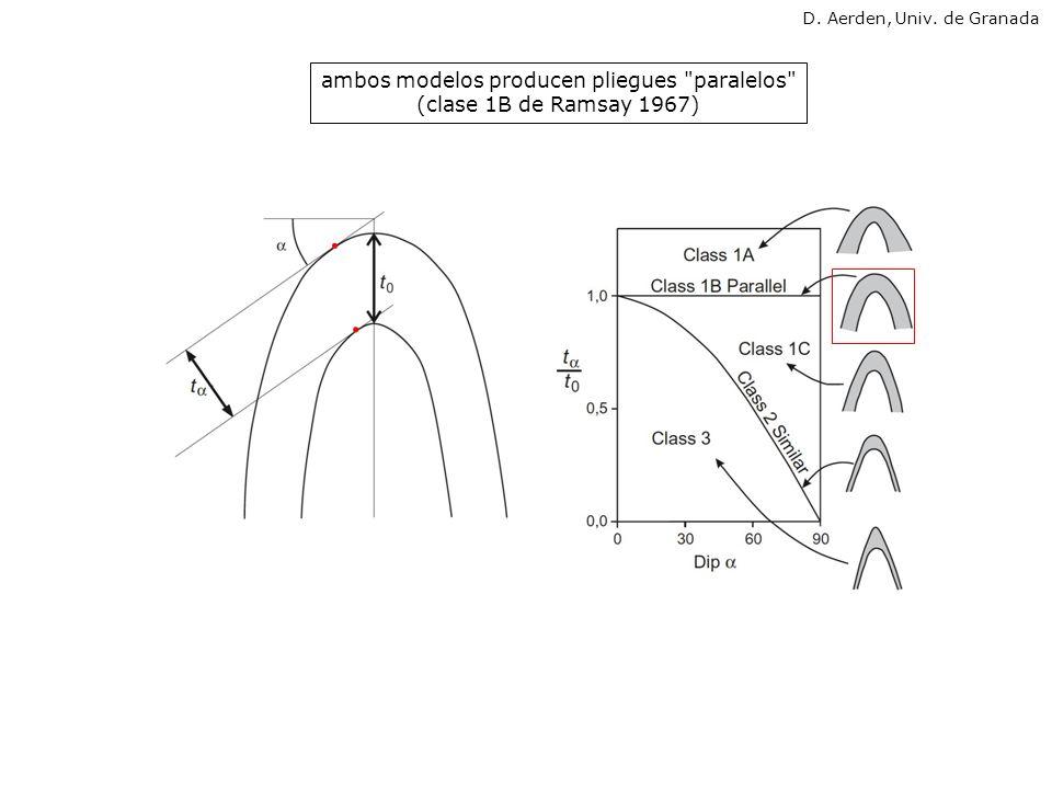 ambos modelos producen pliegues paralelos