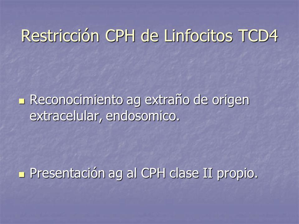 Restricción CPH de Linfocitos TCD4