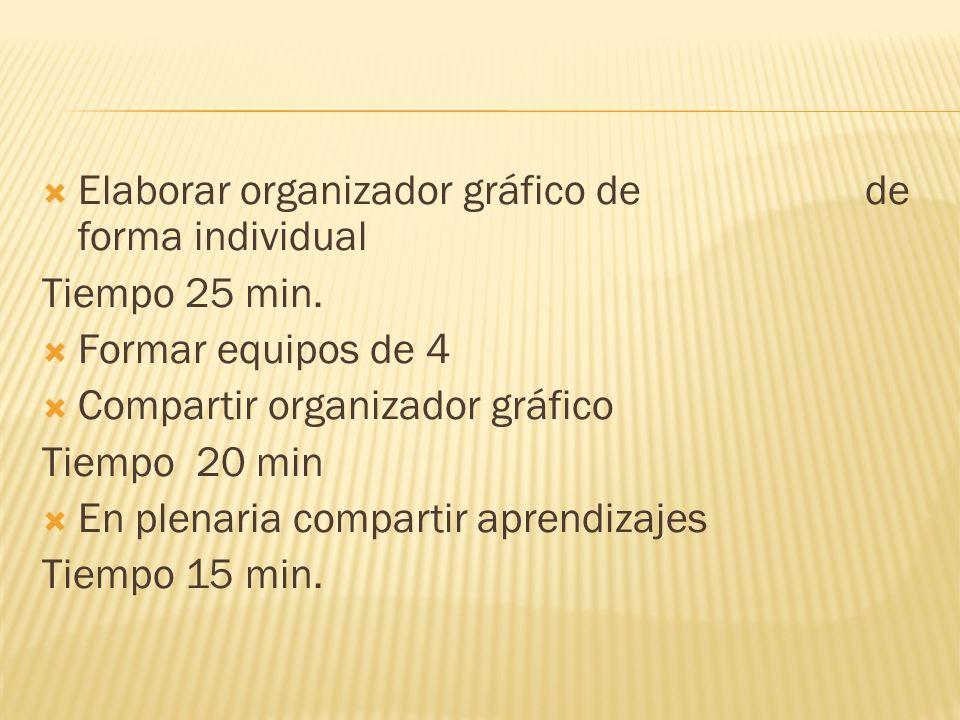 Elaborar organizador gráfico de de forma individual
