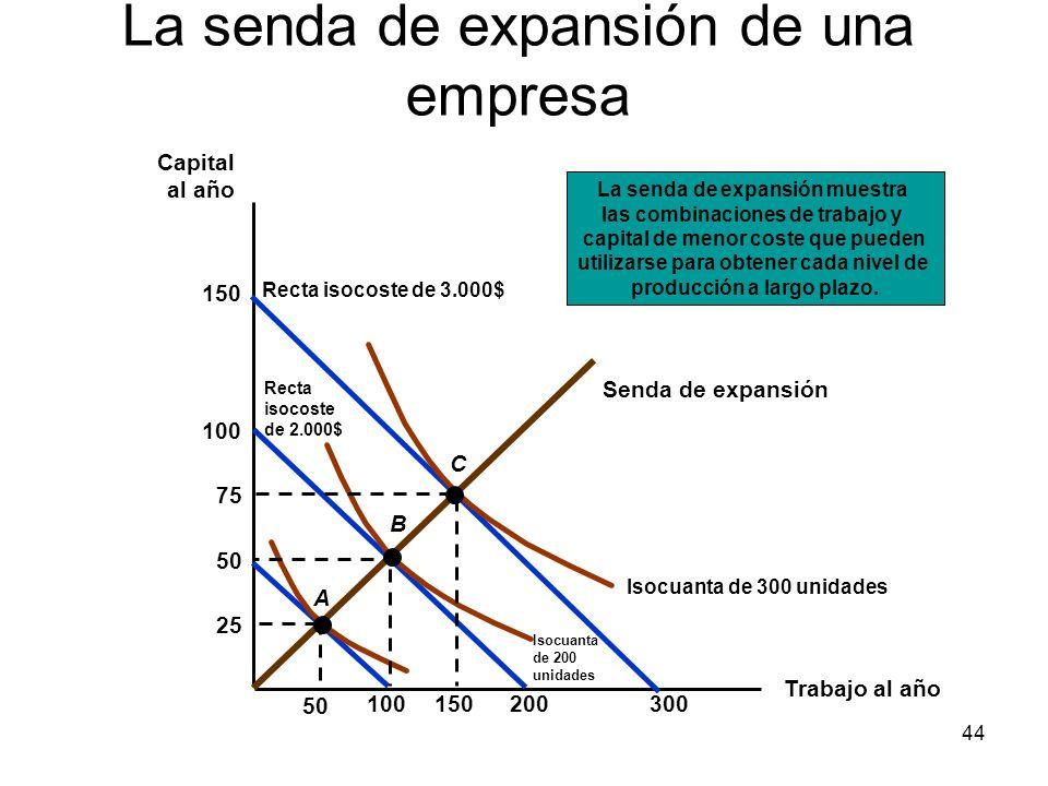 La senda de expansión de una empresa