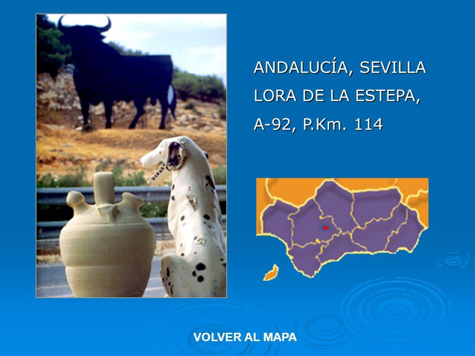 ANDALUCÍA, SEVILLA LORA DE LA ESTEPA, A-92, P.Km. 114 VOLVER AL MAPA