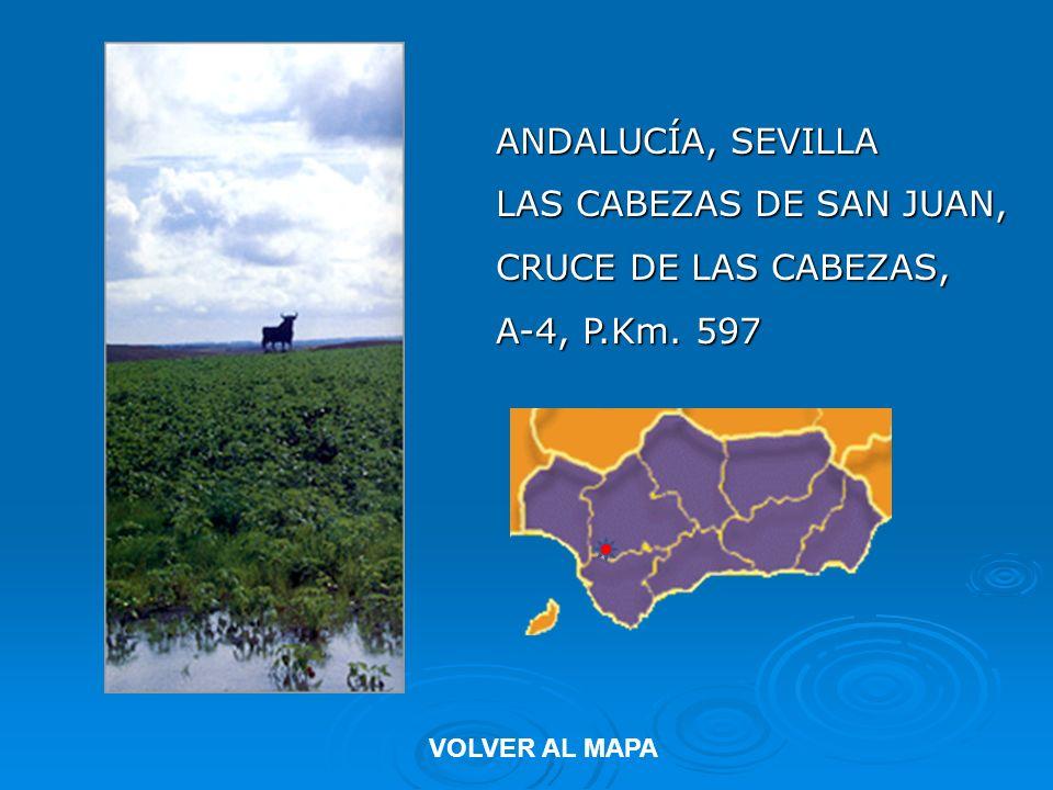 ANDALUCÍA, SEVILLA LAS CABEZAS DE SAN JUAN, CRUCE DE LAS CABEZAS,