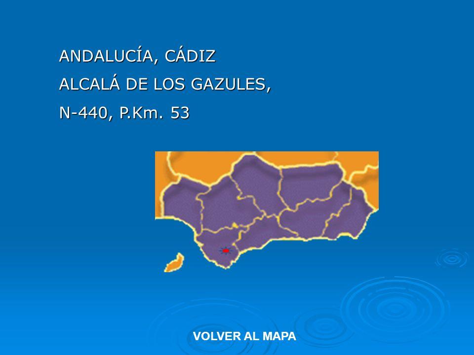 ANDALUCÍA, CÁDIZ ALCALÁ DE LOS GAZULES, N-440, P.Km. 53 VOLVER AL MAPA