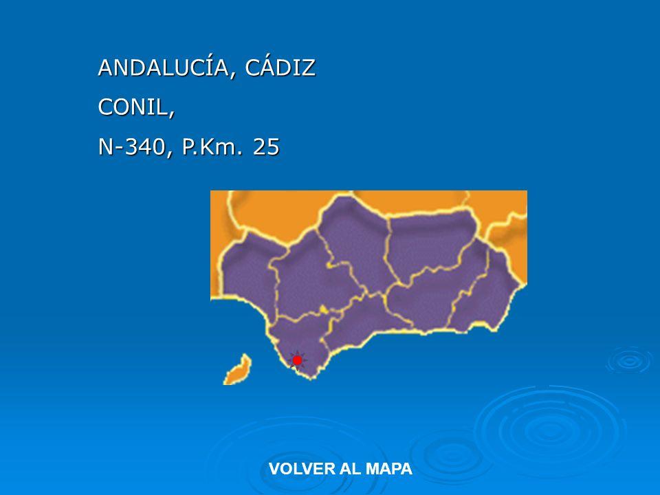 ANDALUCÍA, CÁDIZ CONIL, N-340, P.Km. 25 VOLVER AL MAPA