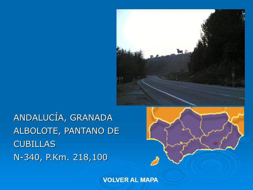 ANDALUCÍA, GRANADA ALBOLOTE, PANTANO DE CUBILLAS N-340, P.Km. 218,100