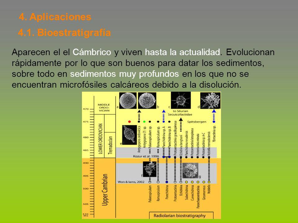 4. Aplicaciones 4.1. Bioestratigrafía