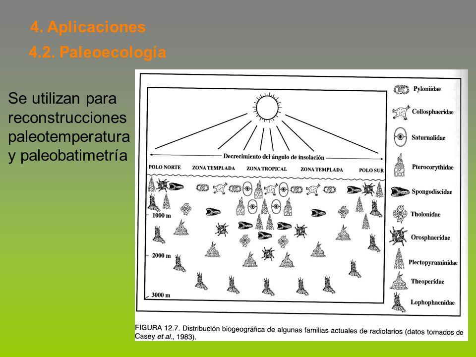 4. Aplicaciones 4.2. Paleoecología. Se utilizan para.