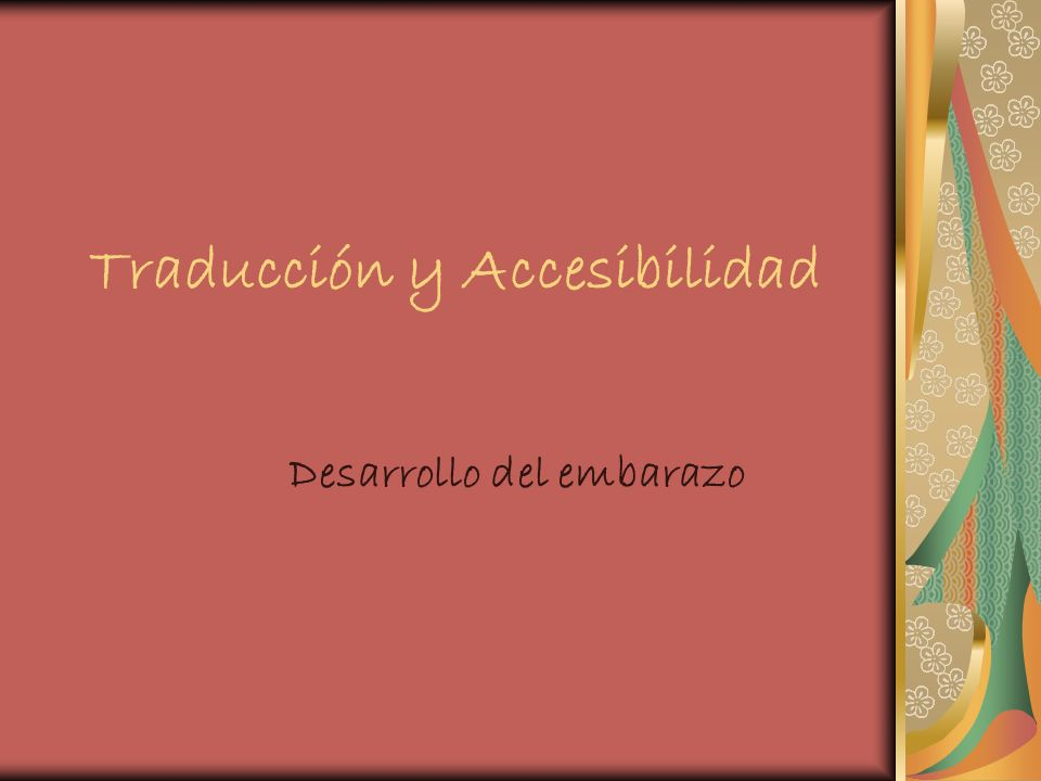 Traducción y Accesibilidad