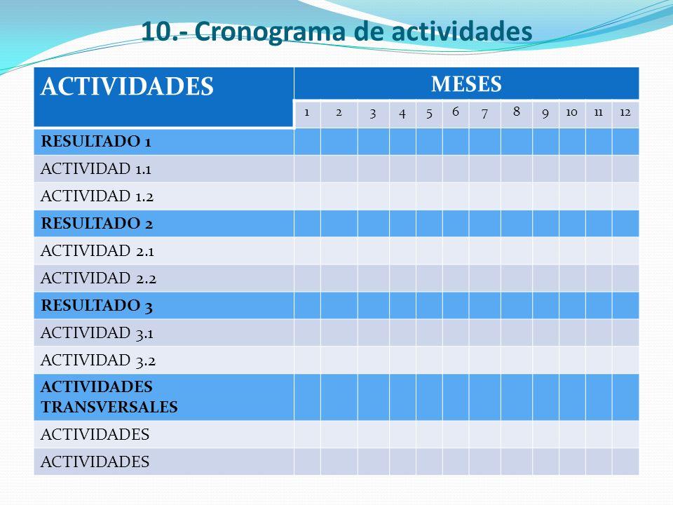 10.- Cronograma de actividades