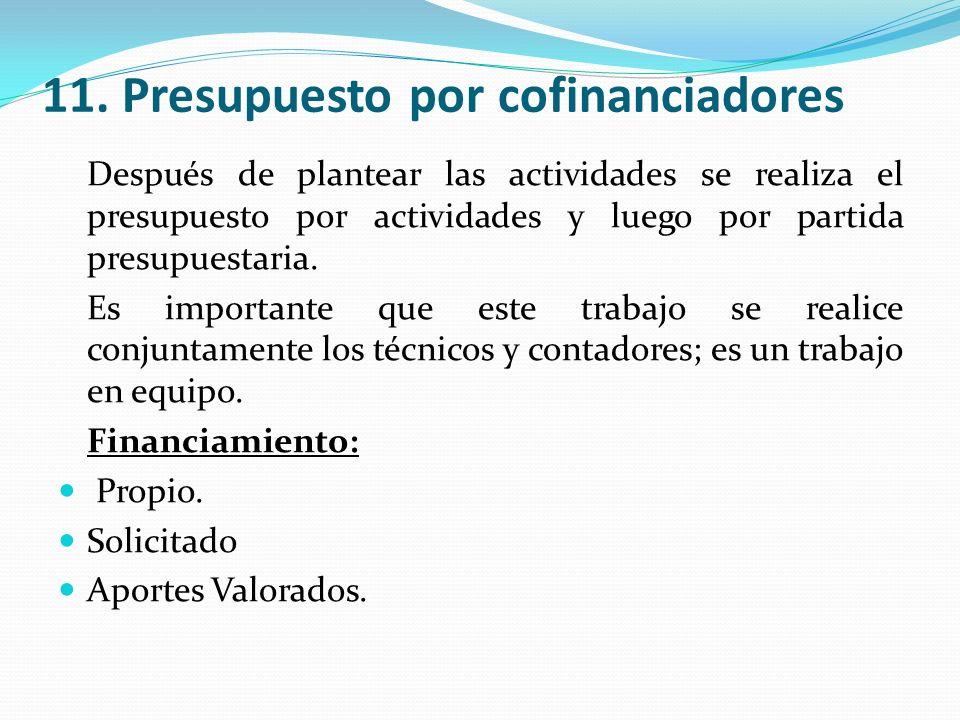 11. Presupuesto por cofinanciadores