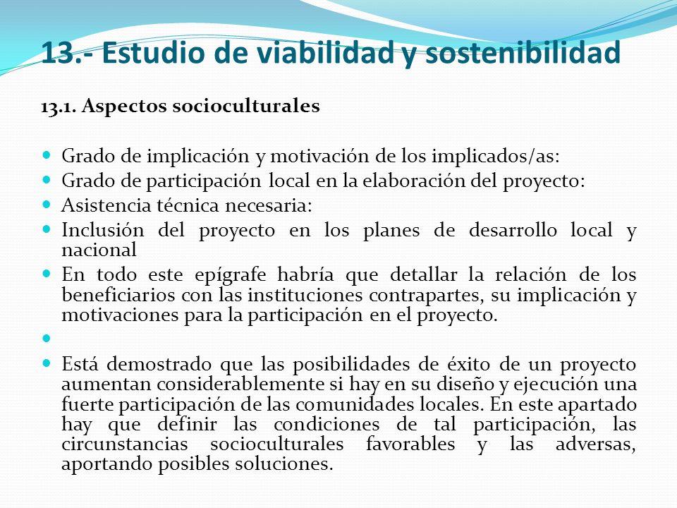 13.- Estudio de viabilidad y sostenibilidad