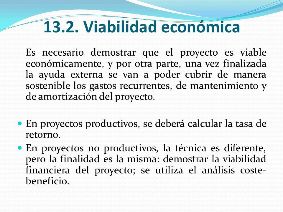 13.2. Viabilidad económica