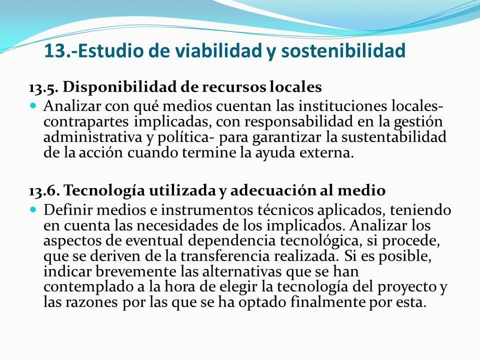 13.-Estudio de viabilidad y sostenibilidad