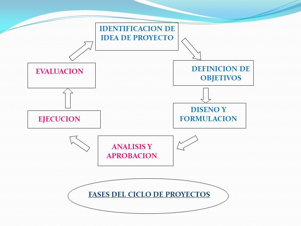 IDENTIFICACION DE IDEA DE PROYECTO