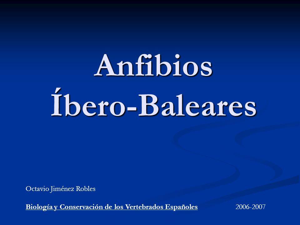 Anfibios Íbero-Baleares