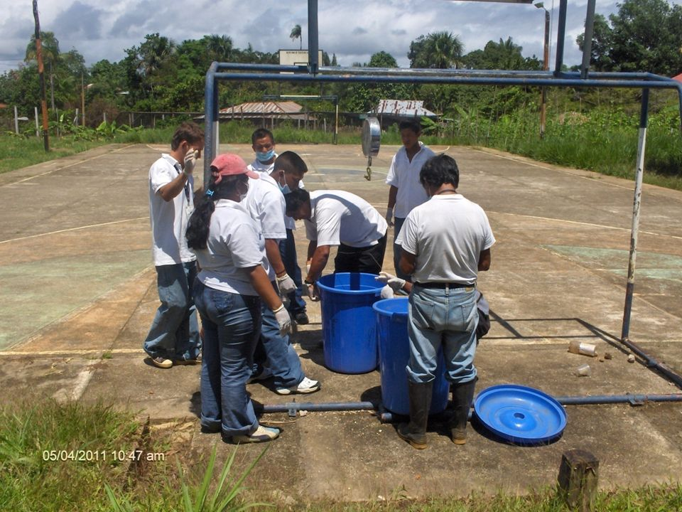REGIONAL VAUPES T.P EN PRODUCCION AGRICOLA
