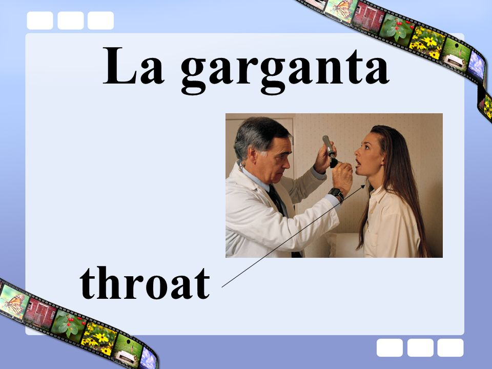 La garganta throat