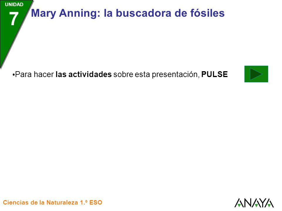 Para hacer las actividades sobre esta presentación, PULSE