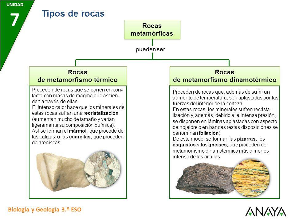 Rocas de metamorfismo térmico Rocas de metamorfismo dinamotérmico