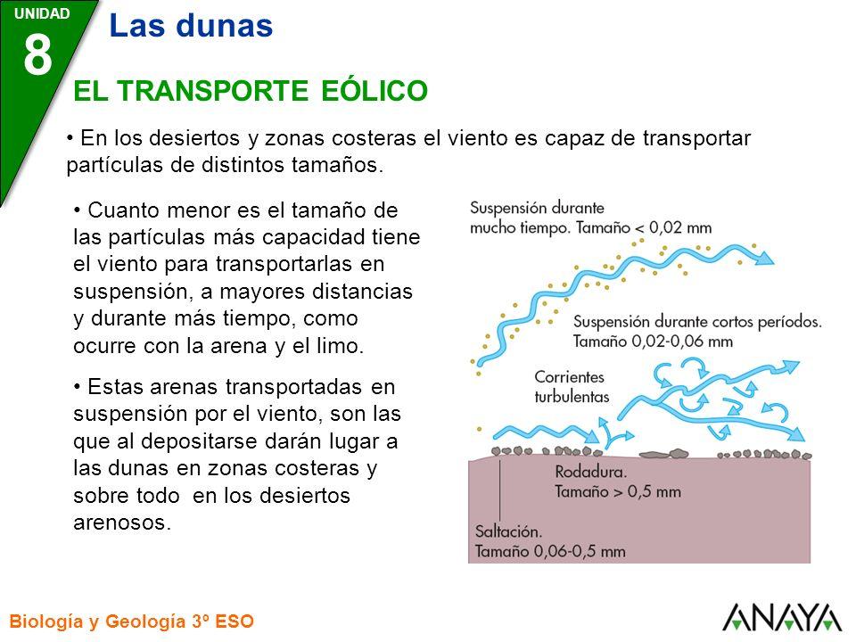 8 Las dunas EL TRANSPORTE EÓLICO