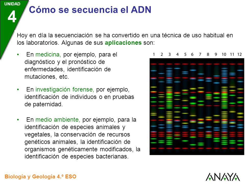 Hoy en día la secuenciación se ha convertido en una técnica de uso habitual en los laboratorios. Algunas de sus aplicaciones son: