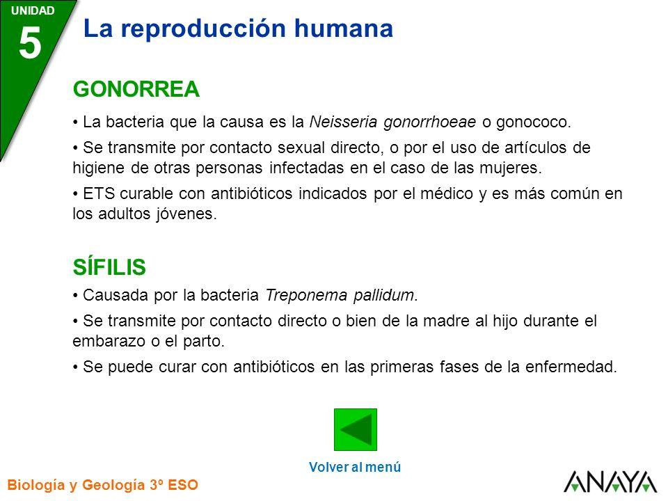 5 La reproducción humana GONORREA SÍFILIS