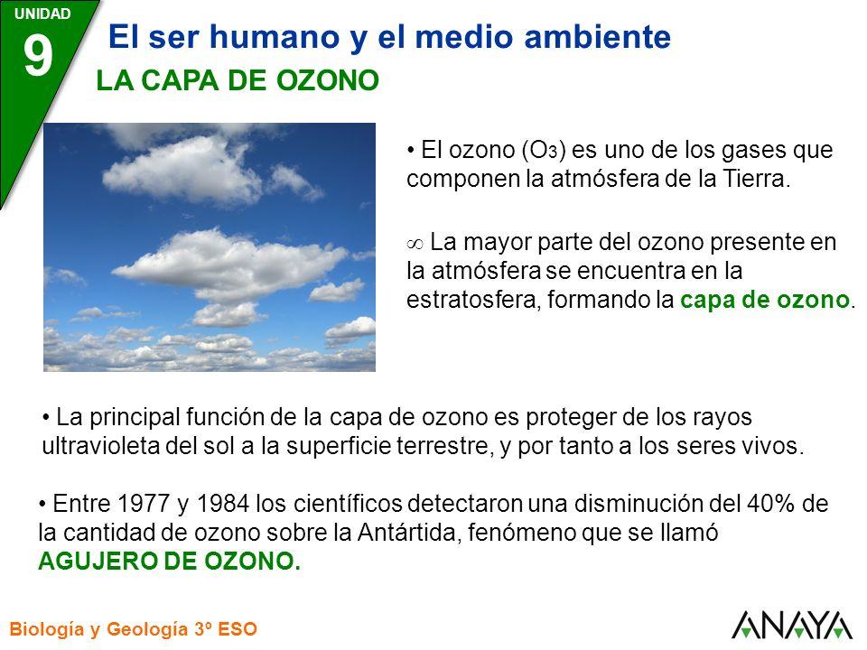 9 El ser humano y el medio ambiente LA CAPA DE OZONO