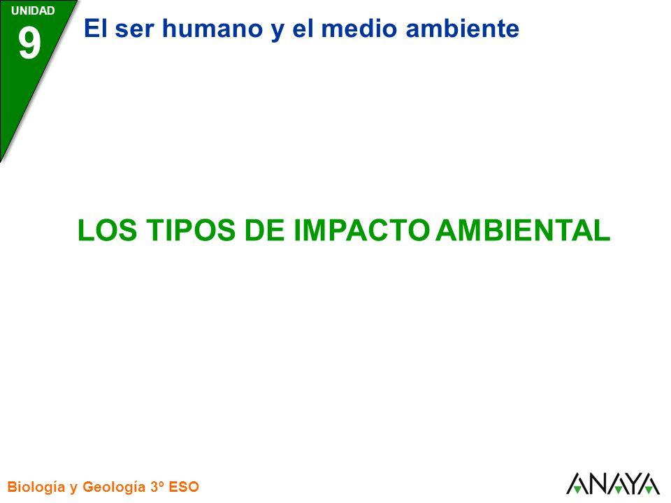 LOS TIPOS DE IMPACTO AMBIENTAL