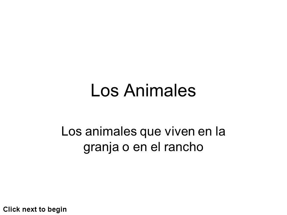 Los animales que viven en la granja o en el rancho