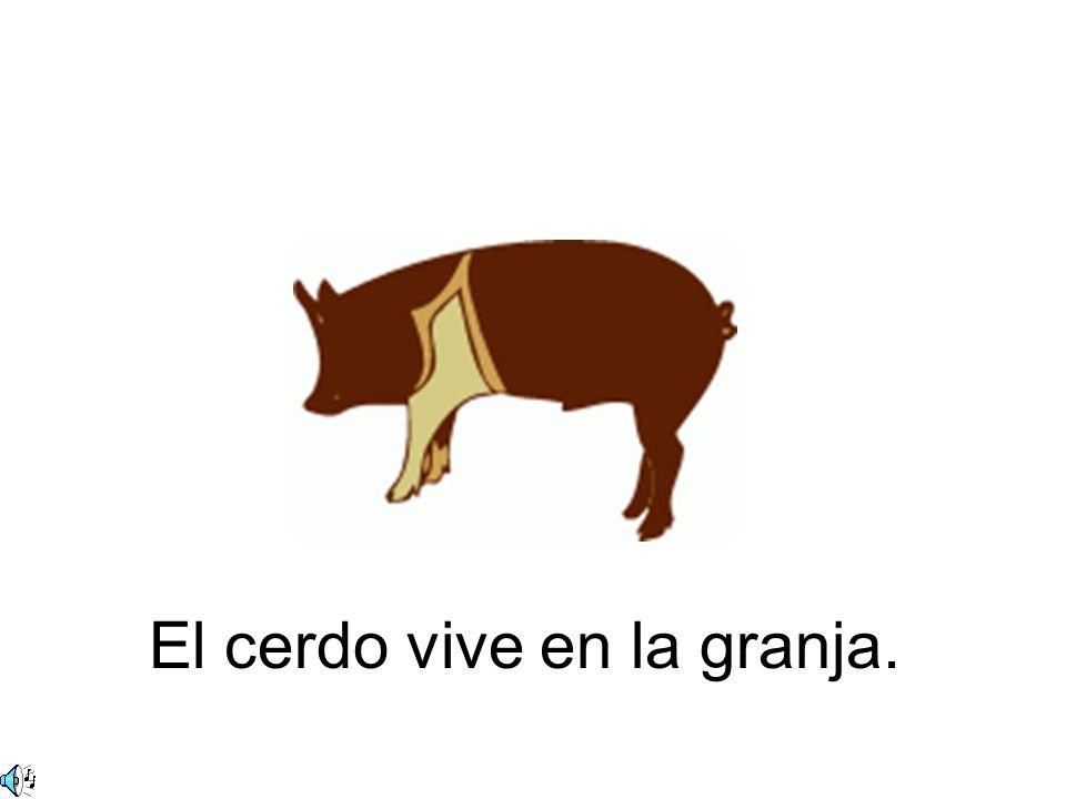 El cerdo vive en la granja.