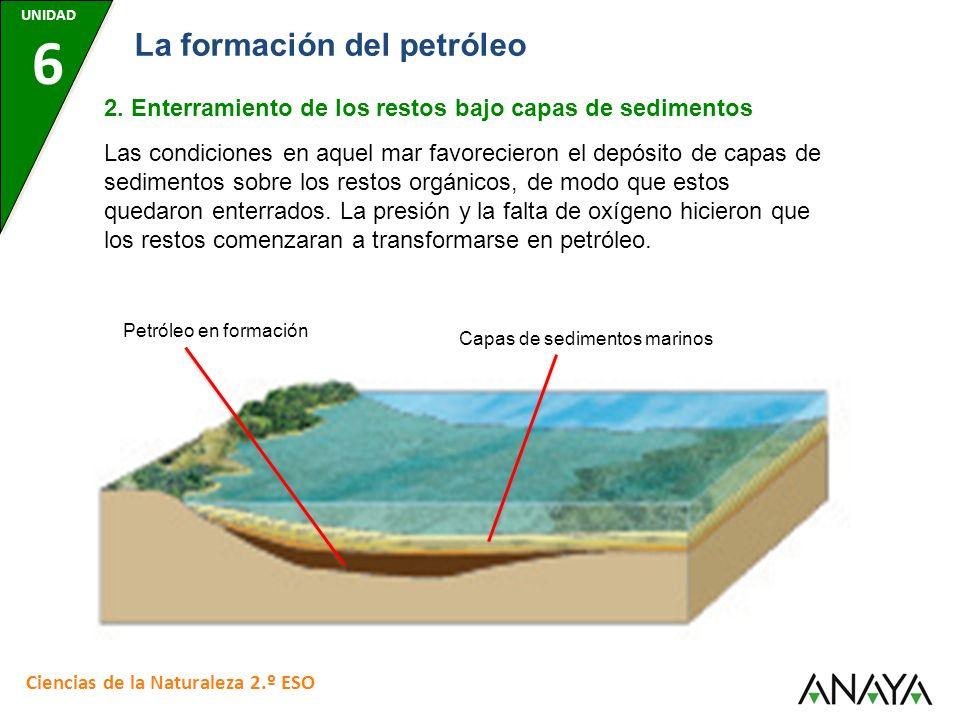 Capas de sedimentos marinos