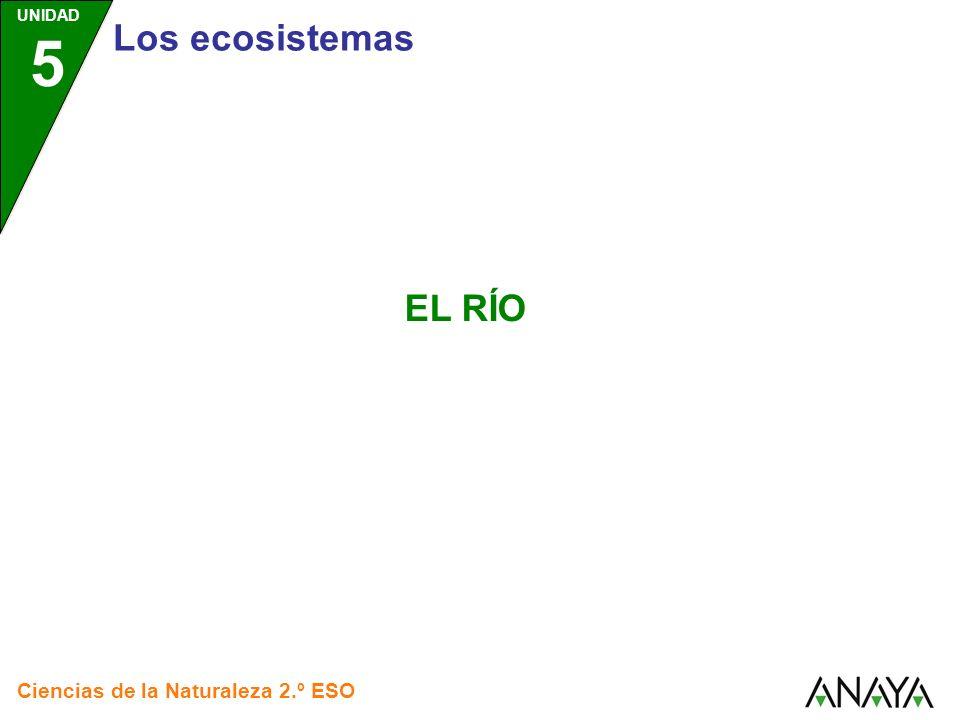 UNIDAD 5 Los ecosistemas EL RÍO Ciencias de la Naturaleza 2.º ESO 1