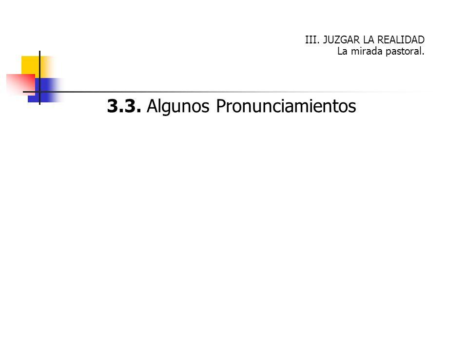 3.3. Algunos Pronunciamientos