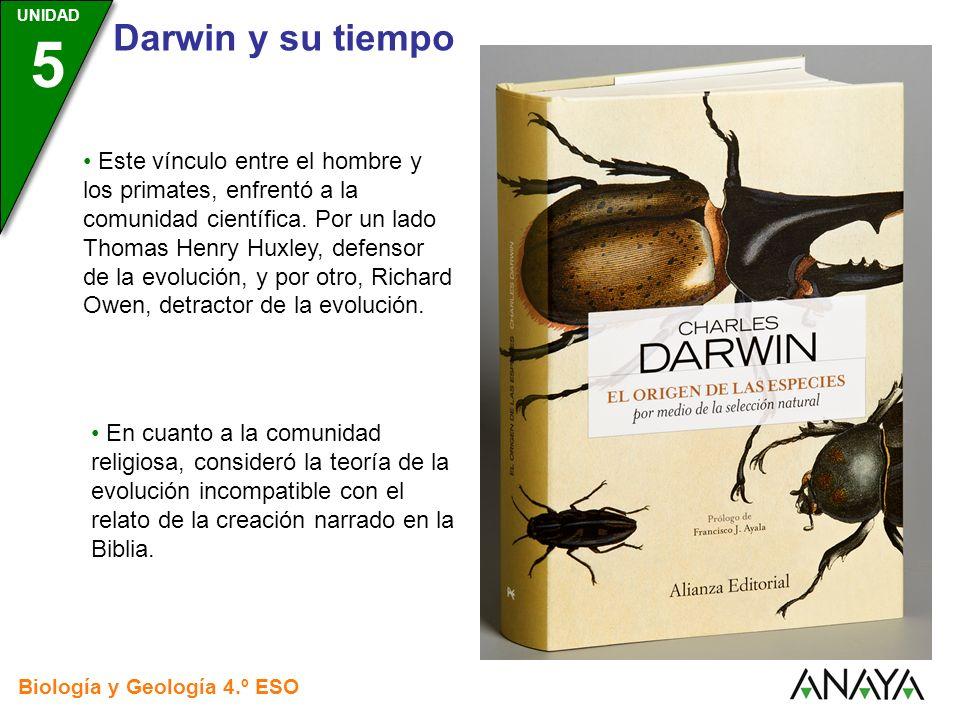 Este vínculo entre el hombre y los primates, enfrentó a la comunidad científica. Por un lado Thomas Henry Huxley, defensor de la evolución, y por otro, Richard Owen, detractor de la evolución.