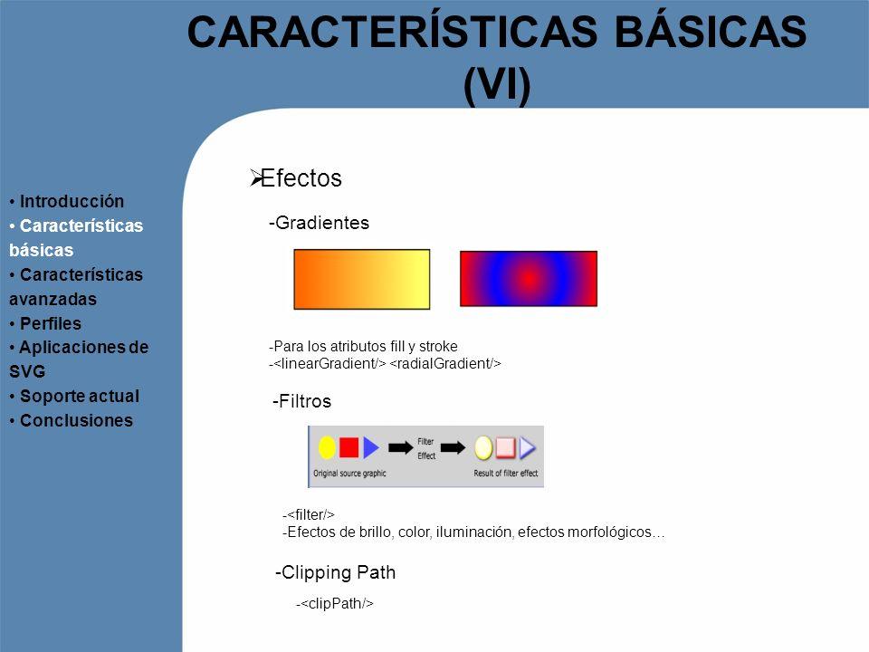 CARACTERÍSTICAS BÁSICAS (VI)