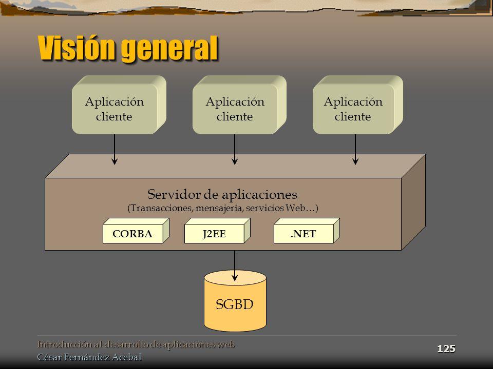 Visión general Servidor de aplicaciones SGBD Aplicación cliente