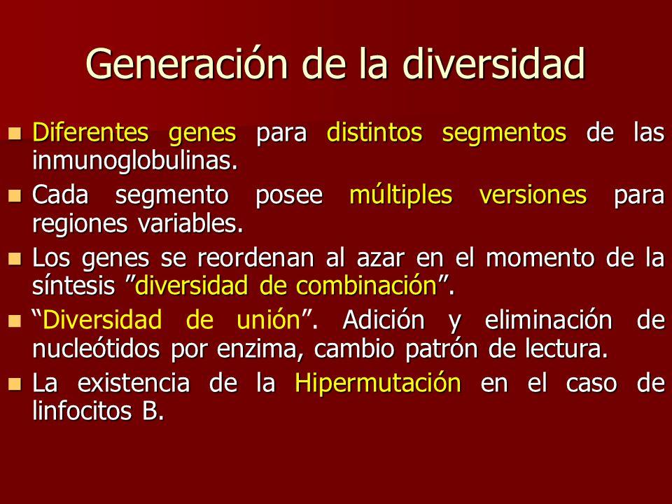 Generación de la diversidad