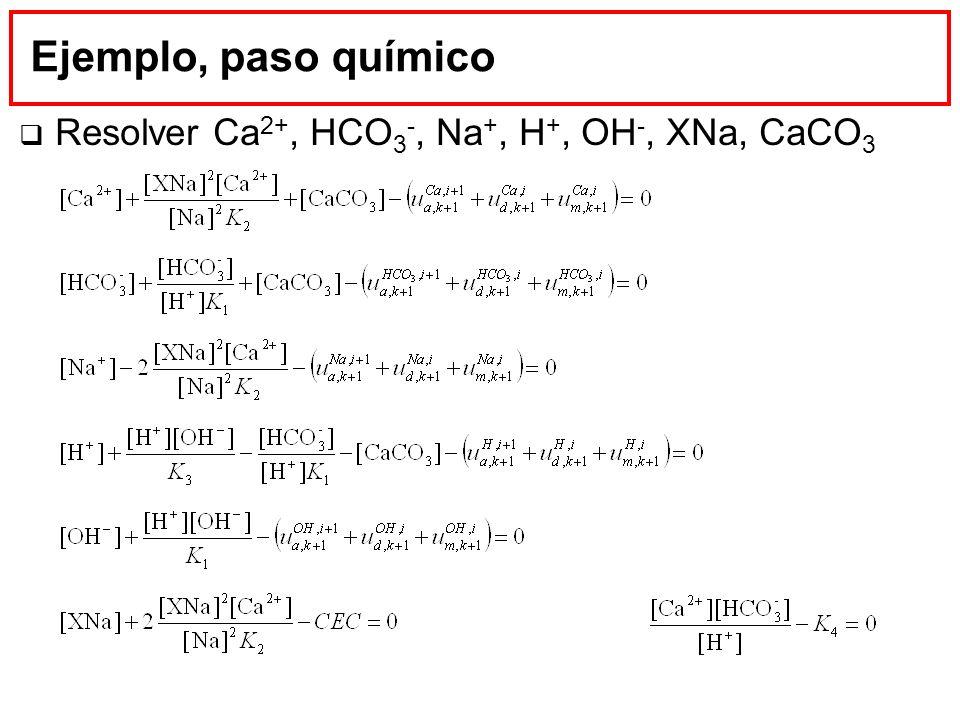 Ejemplo, paso químico Resolver Ca2+, HCO3-, Na+, H+, OH-, XNa, CaCO3