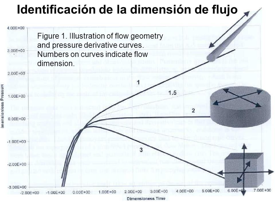 Identificación de la dimensión de flujo
